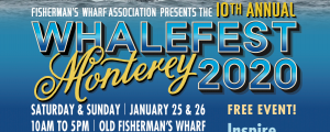 whalefest 2020
